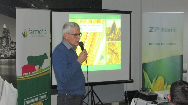Lopandić: Kukuruz je ratarska kultura broj 1 na našim oranicama