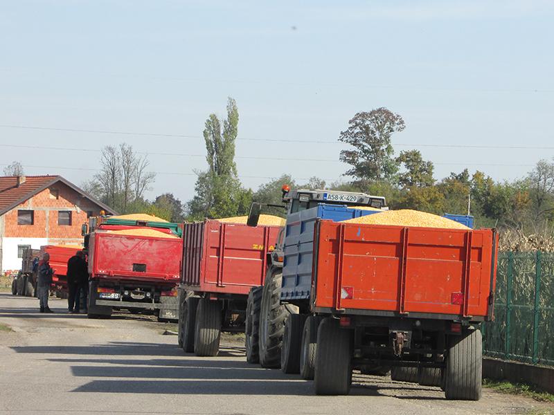 Kukuruz je izuzetno tržišna roba, čija cijena se formira na berzi.